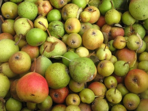 Mixed Perry Pears