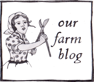 Our Farm Blog