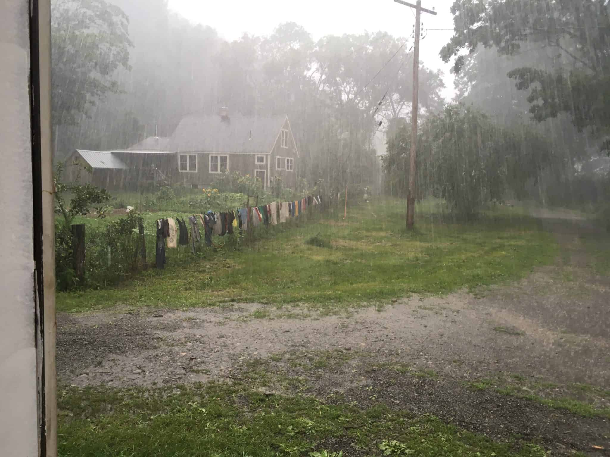 A cool and very wet growing season.