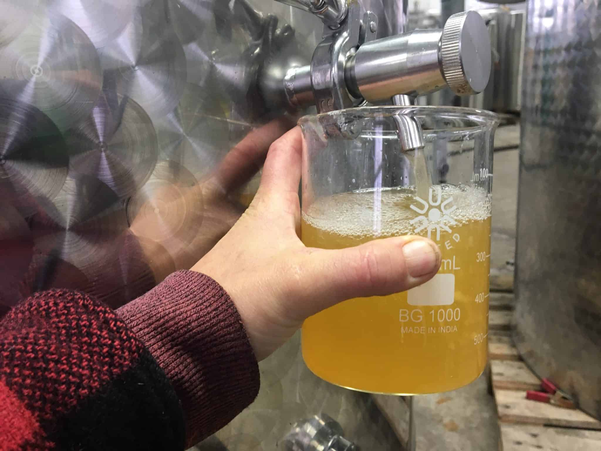 Pulling a Cider Sample