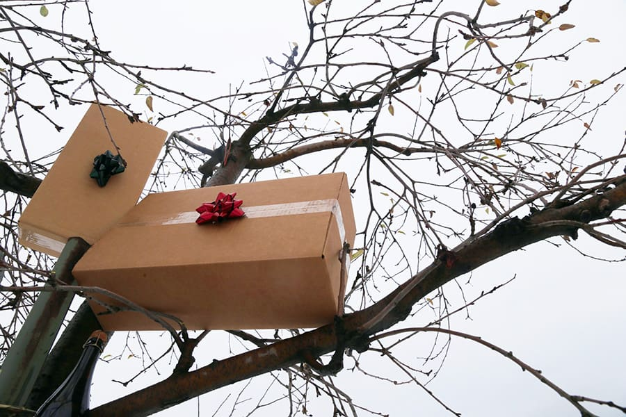 packages in a tree