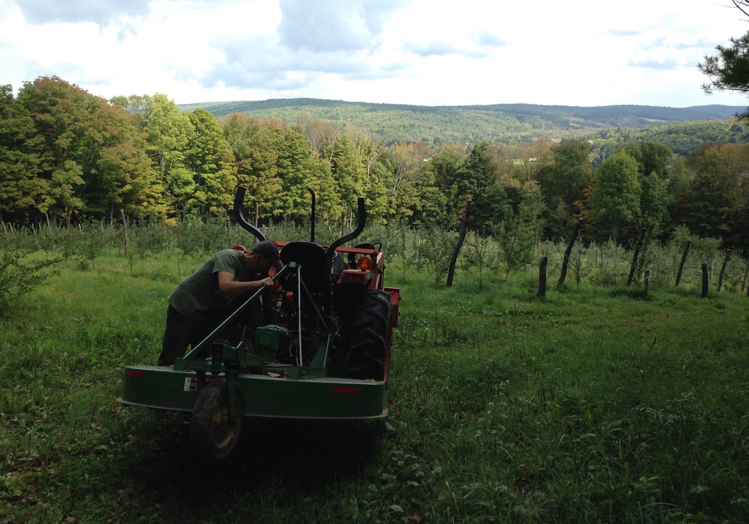 hills-north-orchard-tractor-at-eves-cidery